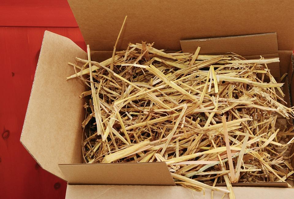 balení věcí do krabice