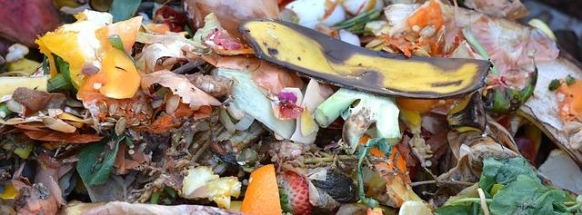 obsah kompostéru.jpg